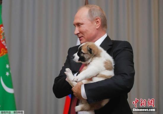 资料图:怀抱宠物狗的俄总统普京。