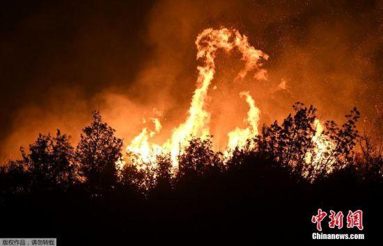 亚得里亚海海岸线野火肆虐 夜半火光冲天