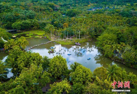 航拍海南保亭呀诺达热带雨林