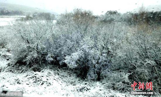 黑龙江黑河降下今冬首场雪